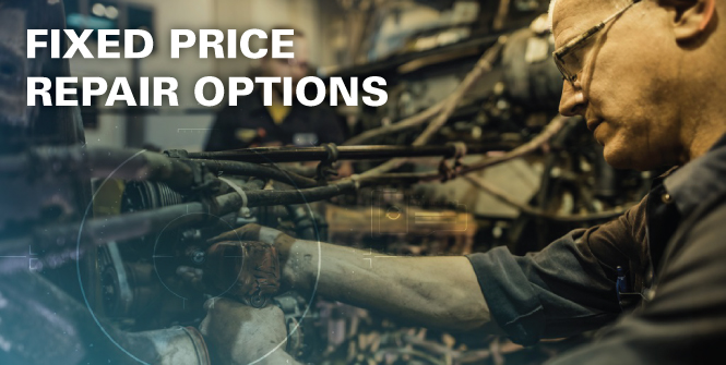 Fixed Price Repair Options